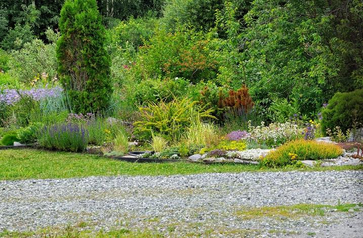 Ботанический сад Соликамска