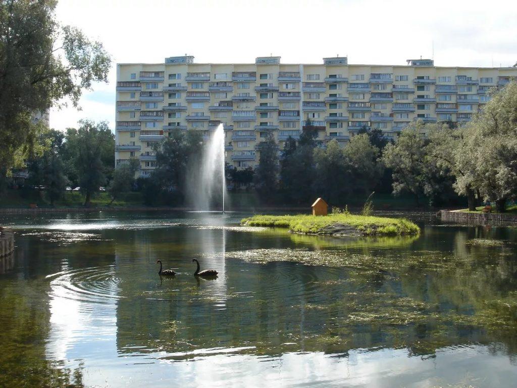 Быково болото в Зеленограде