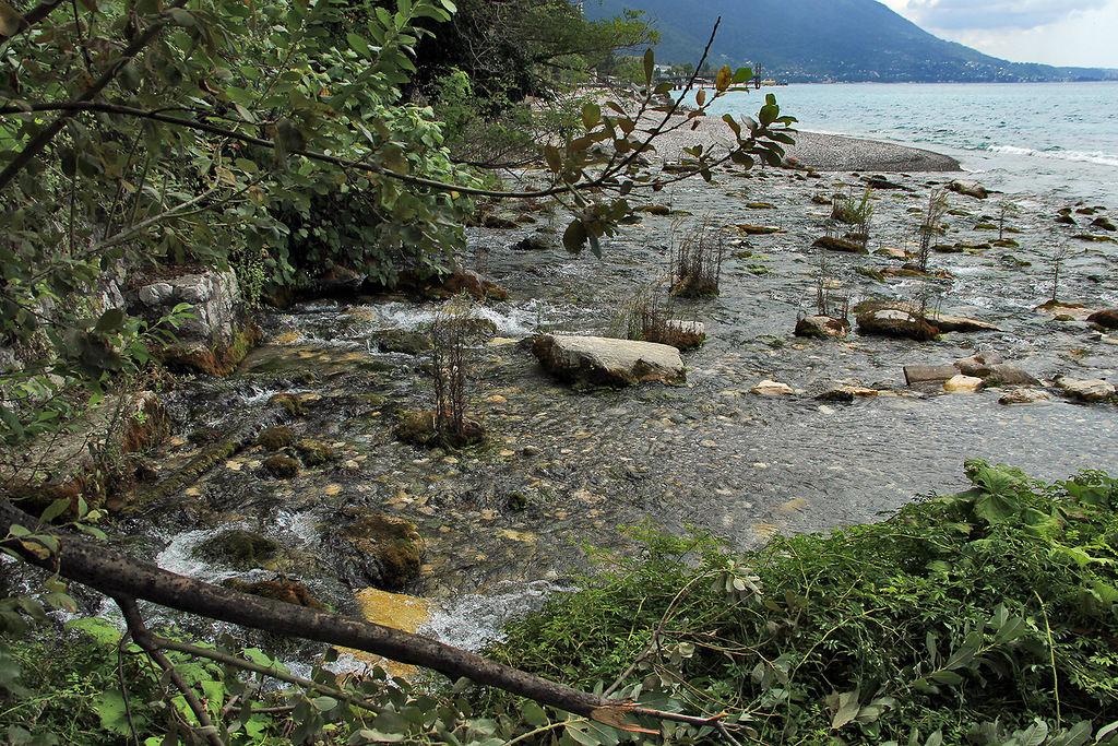 Реки Абхазии