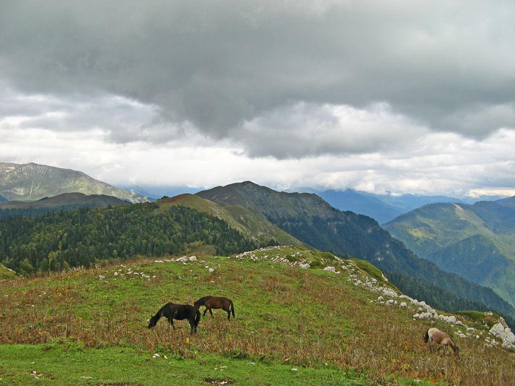 ГораМамдзышха в Абхазии