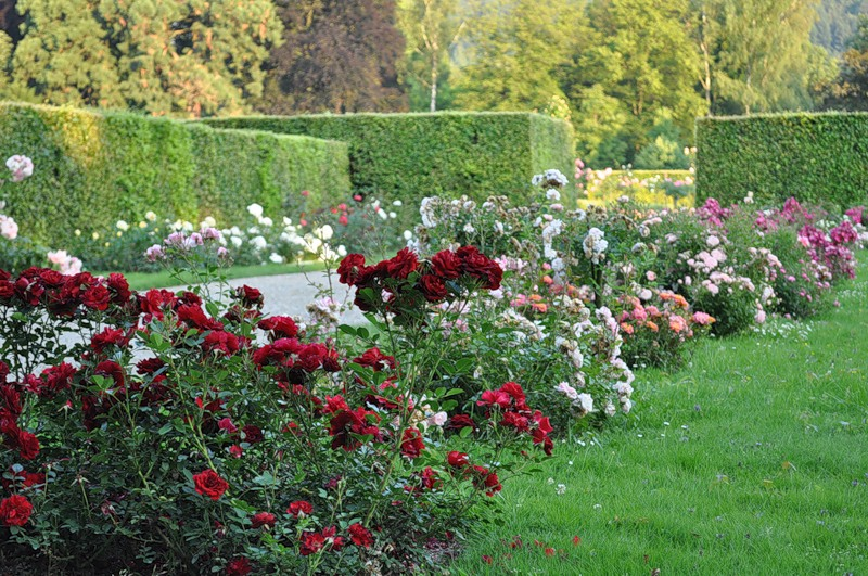 Парк Геннеранланге, Баден-Баден