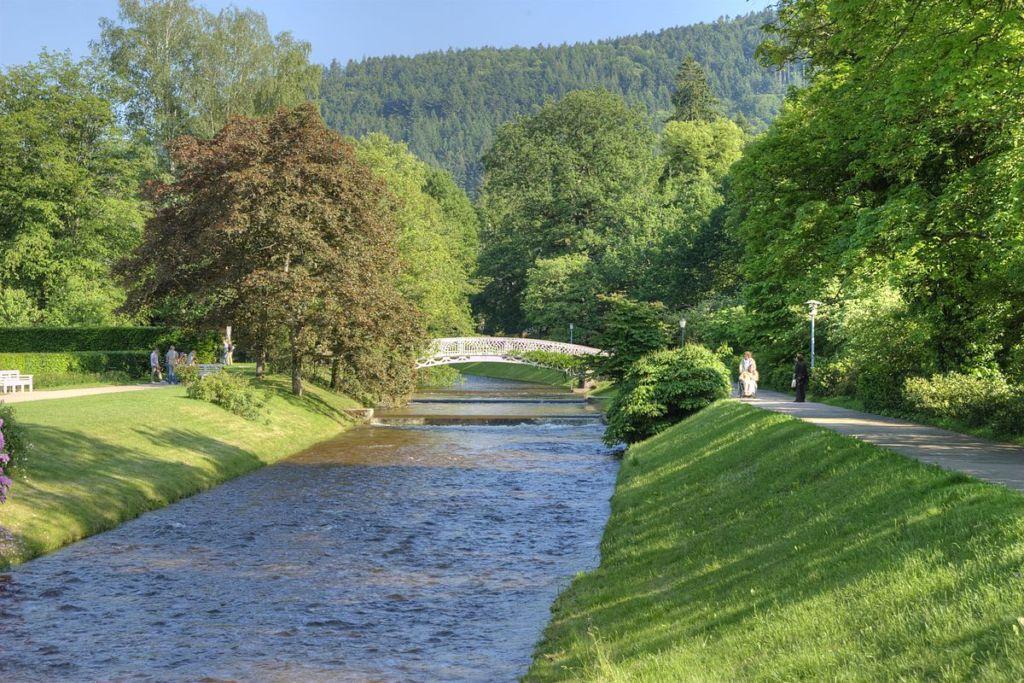 Знаменитая аллея Баден-Бадена