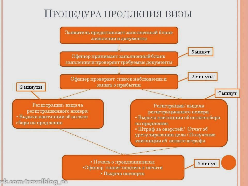 этапы продления визы