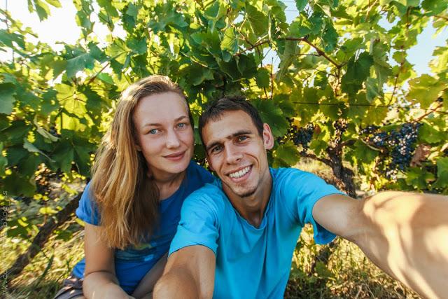 Замок Греми и сбор винограда в Алазанской долине