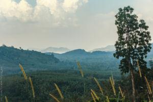 фото дорога в Ранонг
