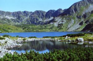 фото горы Карпаты