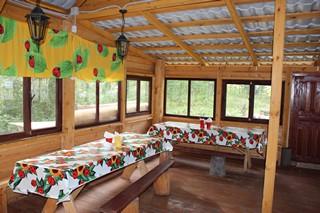 Лесная кухня 2